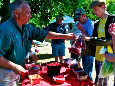 Customers sample cherries at a Door County Farmers Market. Photo by Len Villano.
