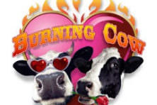 Burning Cow Music Festival